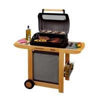 Campingaz RBS Woody rendszerű grill