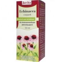 Jutavit Echinacea Cseppek(50ml)