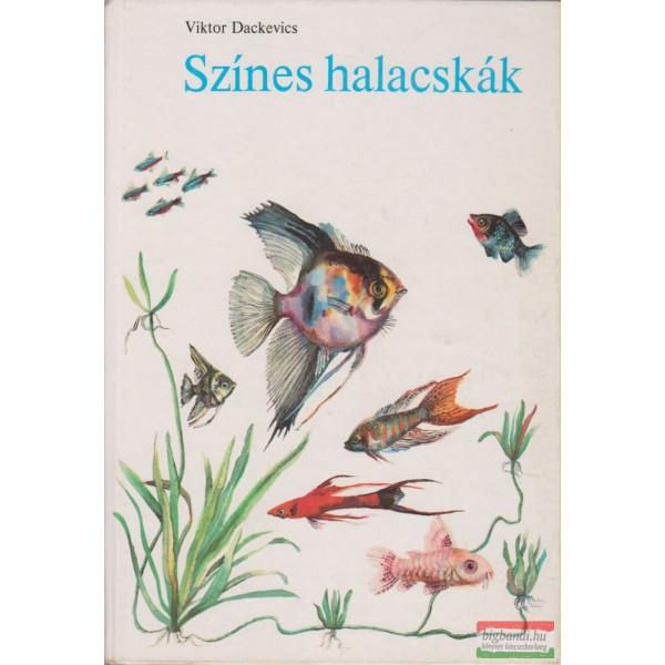 társkereső akvárium fiúk a legjobb társkereső oldalak ingyenes