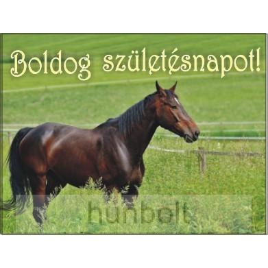 szülinapi lovas képeslapok Olcsó Boldog árak, Boldog árösszehasonlítás, eladó Boldog akció  szülinapi lovas képeslapok